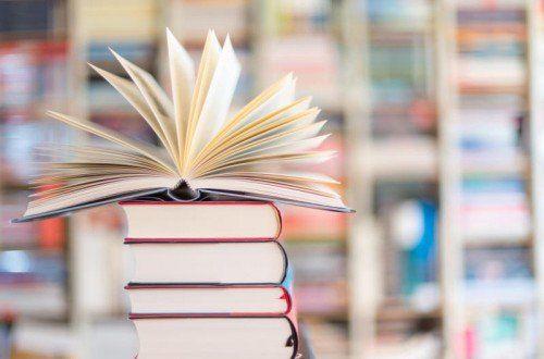 Jährlich versammelt das Festival erfolgreiche Autoren, die ihre aktuellen Bücher in den Bibliotheken präsentieren.