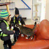 Kinder erlebten Hunde, Katzen  und Co. hautnah