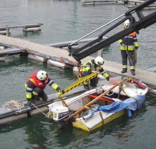 Das untergegangene Motorboot wurde von der Feuerwehr Bregenz Vorkloster mittels Kran hochgehievt.