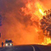 Australien: Buschbrand gerät außer Kontrolle