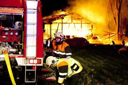 Durchschnittlich elf Einsätze täglich hatten Vorarlbergs Feuerwehren im letzten Jahr zu bewältigen.