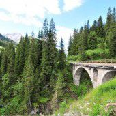 Waldstück in Lech soll versteigert werden