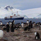 Urlaub in der Antarktis