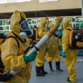 Armee soll nun das Zika-Virus bekämpfen