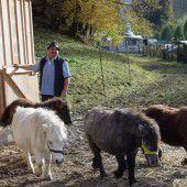 Die Helfer für Tiere in Not