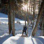 Auf besonderen Spuren den Winter erkunden