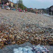 Steine des Anstoßes auf der Bregenzer Pipeline