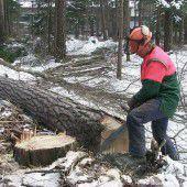 31-jähriger Forstarbeiter stürzt 60 Meter in den Tod