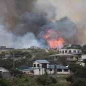 Brände vernichten Wälder in Tasmanien