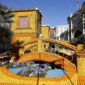 Kunstwerke aus 145 Tonnen Zitrusfrüchten