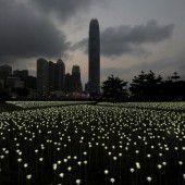 Riesiger Lichterteppich in Hongkong