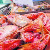 Der Fischmarkt von Marsaxlokk