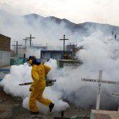 Zika-Virus verursacht Gesundheitsnotstand