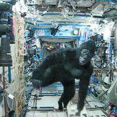 Im Affenkostüm durch die ISS