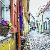 Viel zu entdecken in Tallinns Altstadt