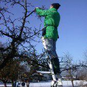 Hals- und Beinbruch beim Baumschnitt