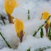 Frühlingsstart nur im Kalender