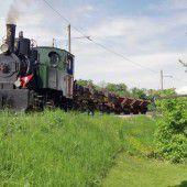 Mäder will Rheinbahn für Rhesi