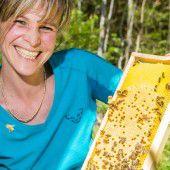 Bienen sind bereit für den Frühling