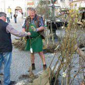 Obstbaummarkt in Feldkirch