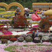 Blumen-Park in Dubai