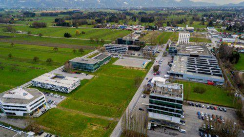 Im Lustenauer Millennium-Park sollen zwei Hotels errichtet werden, die Bauanträge sind eingelangt. VN/Paulitsch