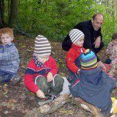 Kindergarten im Wald: neue Gruppen