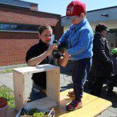 Kinder bauten Nützlingshotels im Kindergarten
