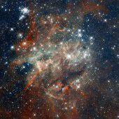 Tiefsee-Sedimente verraten jüngste Sternexplosionen