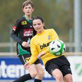 Höchster U-14-Mannschaft weiter auf Erfolgskurs