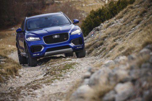 Jaguar auf Abwegen: Erste VN-Testfahrten mit dem neuen F-Pace haben gezeigt, dass die Raubkatze auch klettern kann.