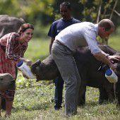 Prinzenpaar gibt Baby-Elefanten die Flasche