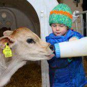 Tierhalter fordern kurze Wege sowie angst- und schmerzfreie Schlachtung