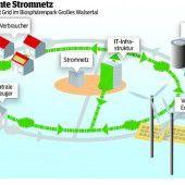 Smart Grid – auch gegen den Strom
