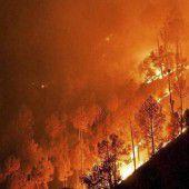 Waldbrände in Indien und Nepal fordern 17 Tote