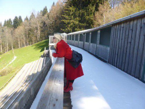 Künstlerin Ona B. ist dabei: Die leer stehenden Volieren der Adlerwarte werden Ausstellungskojen.