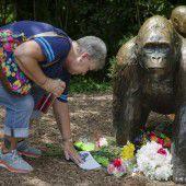 Empörung nach Tod von Gorilla Harambe