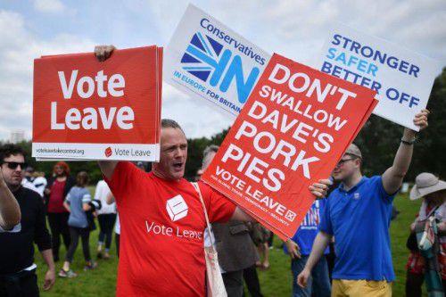 Befürworter und Gegner eines EU-Austritts kämpfen um die Stimmen der vielen Unentschlossenen.