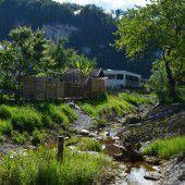 Götzis: Renaturierung am Moosgraben fertig