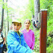 Neue Tafeln für Bludenzer Waldlehrpfad