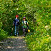 Gute Hege und Pflege für den Wald