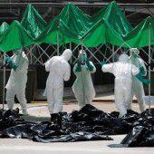 Vogelgrippe-Alarm in Hongkong