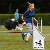Agility: Spiel & Spaß beim Hundesport