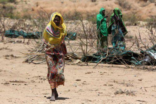 In Teilen des ostafrikanischen Landes hat es seit fast zwei Jahren nicht mehr richtig geregnet.