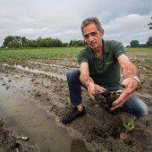 Petrus ertränkte Gemüseernte