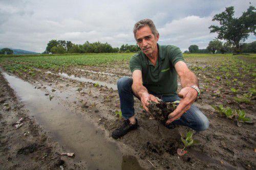 Martin Brunner hat heuer zu wenig Gemüse und zu viel Wasser.
