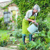 Wie viel Wasser für den Garten braucht es?