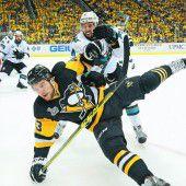 Zweiter Sieg für die Penguins