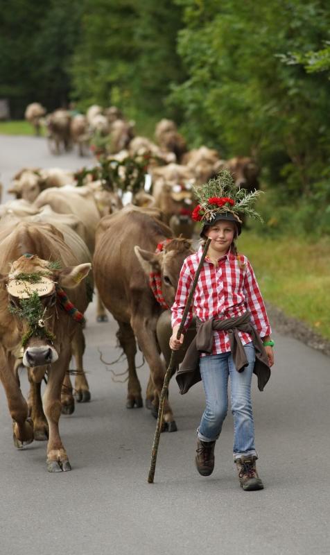 Das ländliche Wegenetz erschließt nicht nur die Alpen.