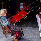 Guatemala: Das Land der Bäume